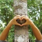 Limpieza de hogares y empresas con respeto al medio ambiente